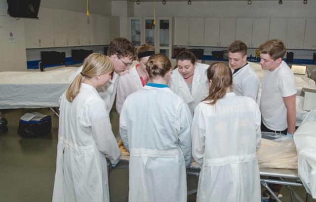 Biology Majors in Cadaver Lab-Gross Anatomy Lab