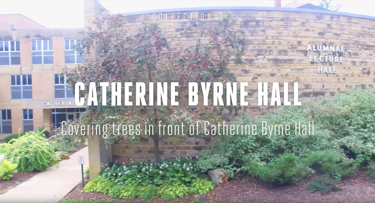 Catherine Byrne Hall Tree Tour