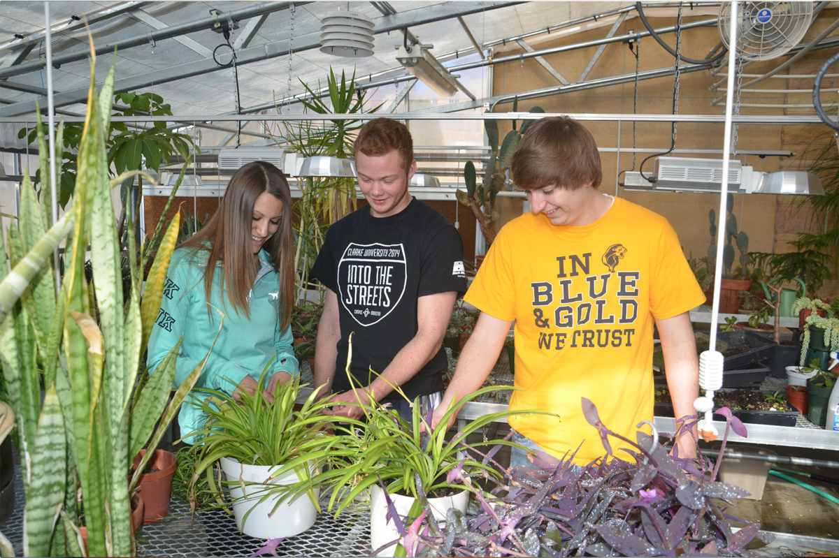 Clarke University Environmental Studies student gather to review project in Clarke greenhouse