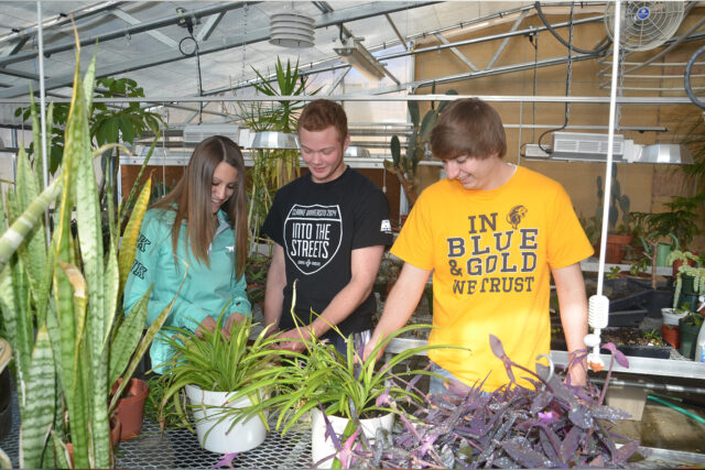 Environmental Studies Green House