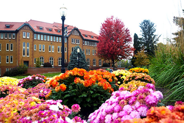 Campus in fall 2
